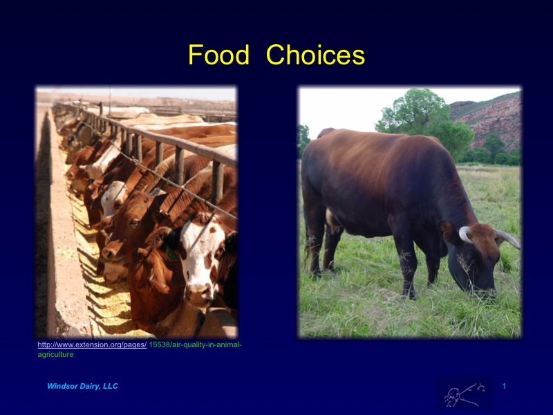 See how Grass Fed Compared to Grain Fed Beef in Uruguayan Study