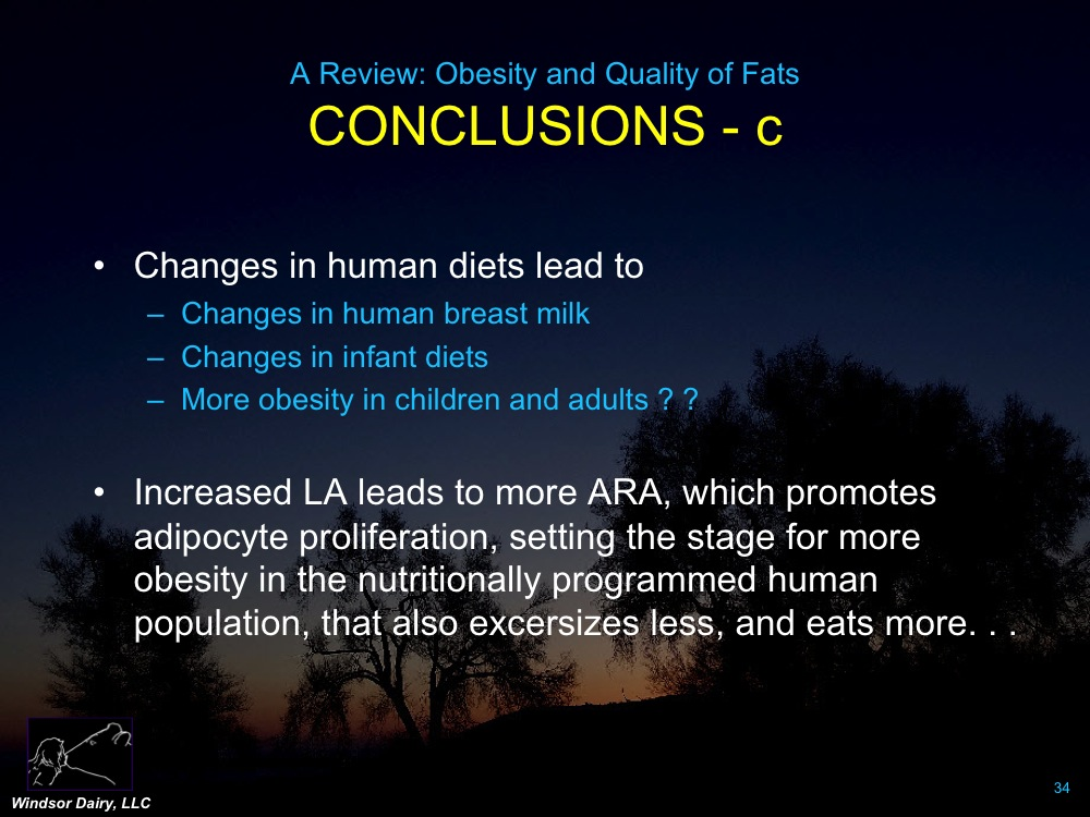 Exhaustive literature review of obesity-omega-3 relationship