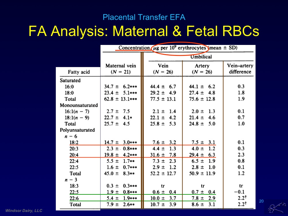 Placental Transfer of Fatty Acids