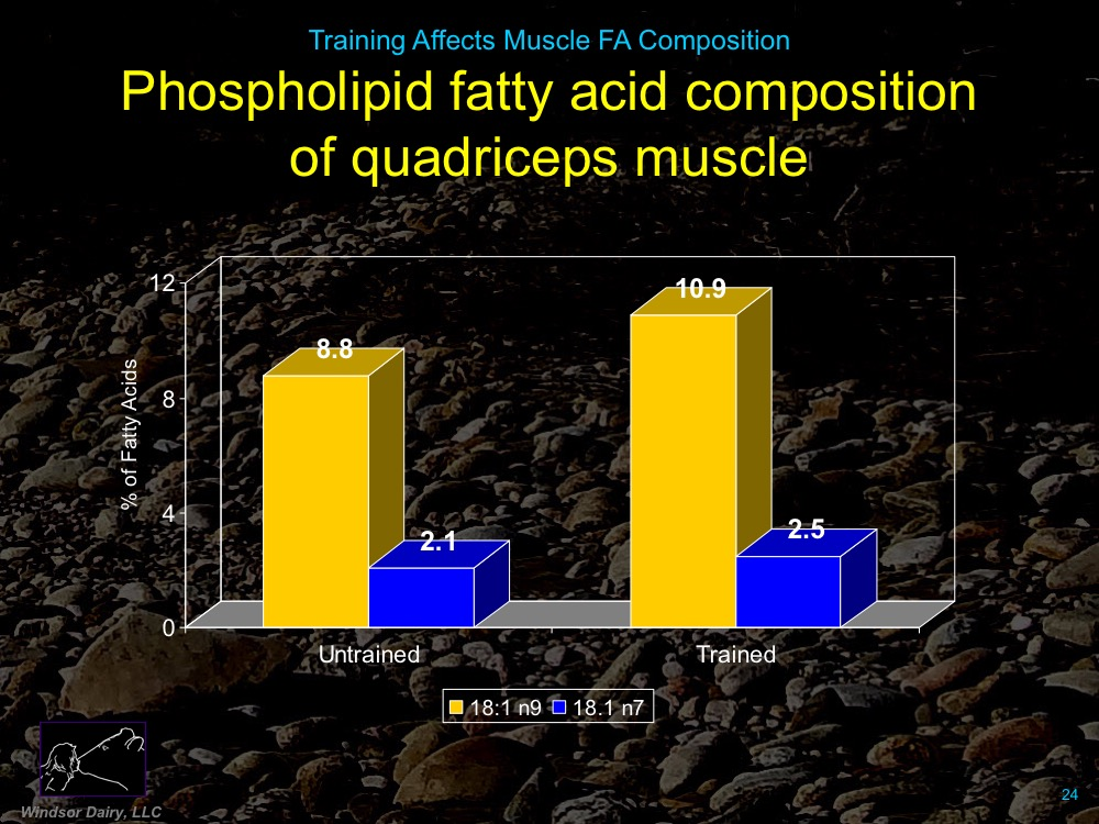 Training Affects Muscle Membrane Fatty Acid Composition: Want to guess whether Omega-3s or Omega-6s Increase with training?